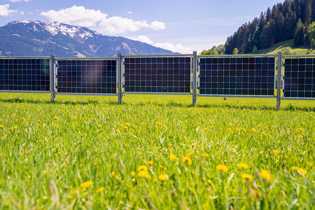 Leitinger´s bifacialer Solarzaun / Agrar-PV