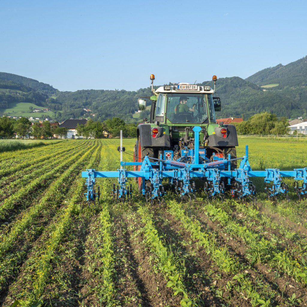 Schon 12% Bio-Betriebe in Deutschland