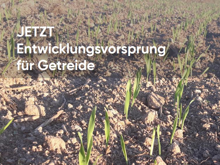 JETZT Entwicklungsvorsprung für Getreide